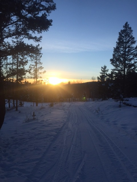 Late afternoon on the Kane Valley ski trails. Photo: Lorna Latremouille