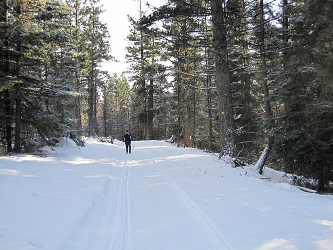 Wilderness skiing at its finest! Fresh powder snow on a groomed trail