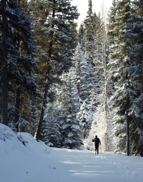 Fresh snow on the Kane Valley trails.   Photo: © Jean Kiegerl